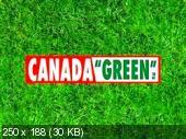 Lawn Grass CanadaGreen. KanadaGreen