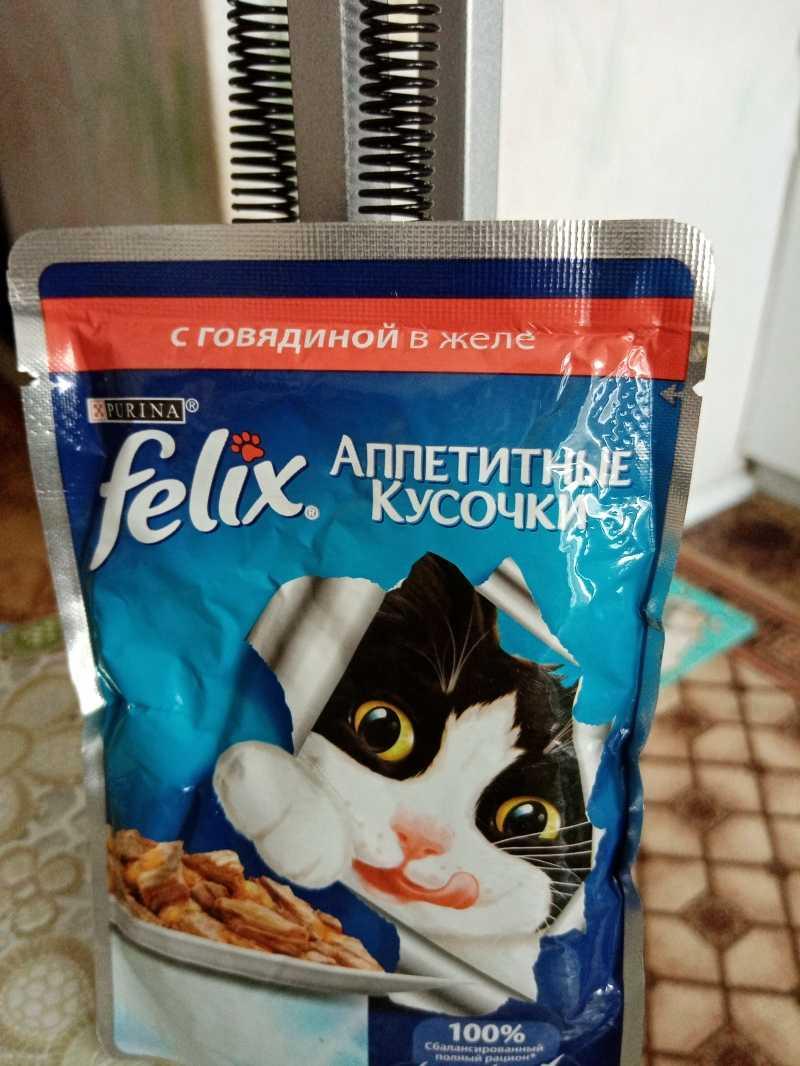 Корм для кошек: купить в Тюмени, интернет-магазин корма