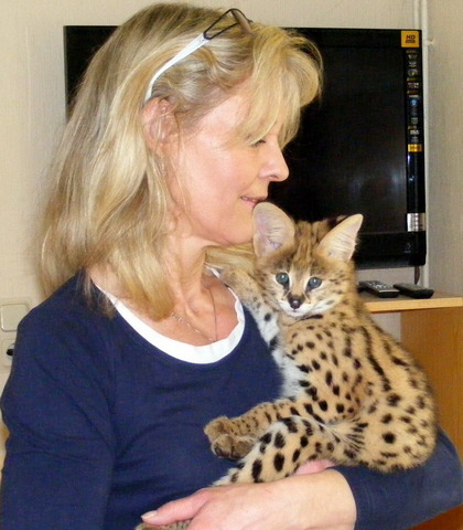 Serval home can buy from us. Sell manual serialchikov